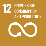 UN Responsible Consumption and Production image