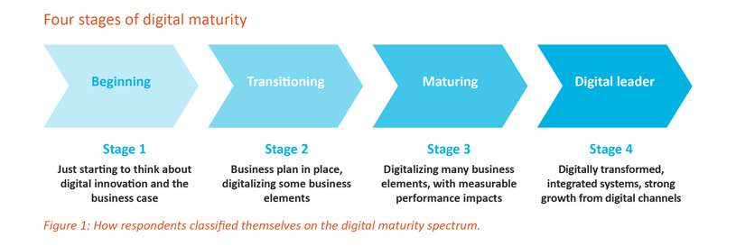 Four stages of digital maturity