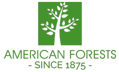 American Forests Partnership