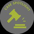 Case Spot